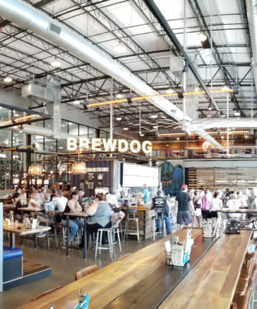 11 Things You Should Know About BrewDog